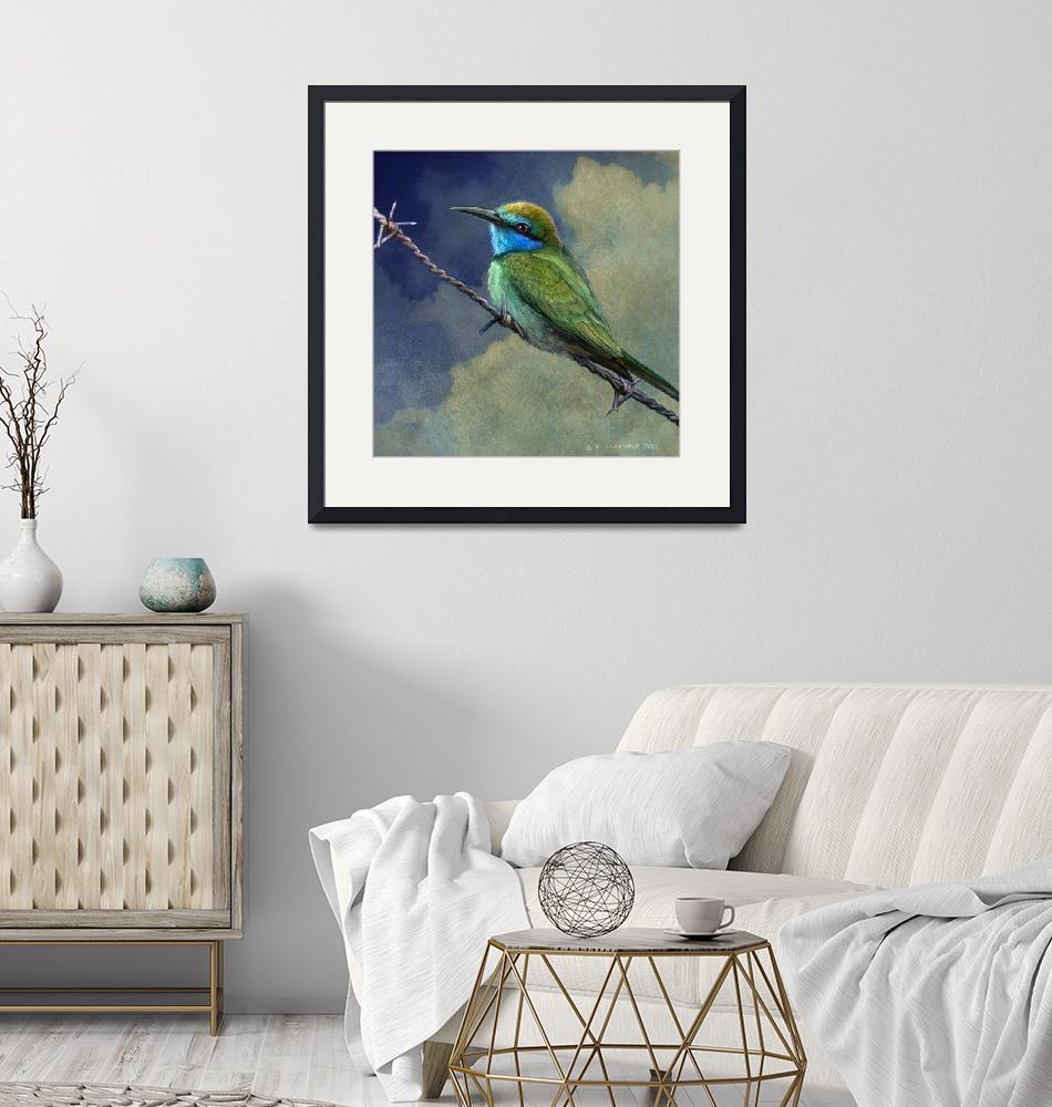 """""""barriers - little green bee eater in israel""""  (2011) by rchristophervest"""