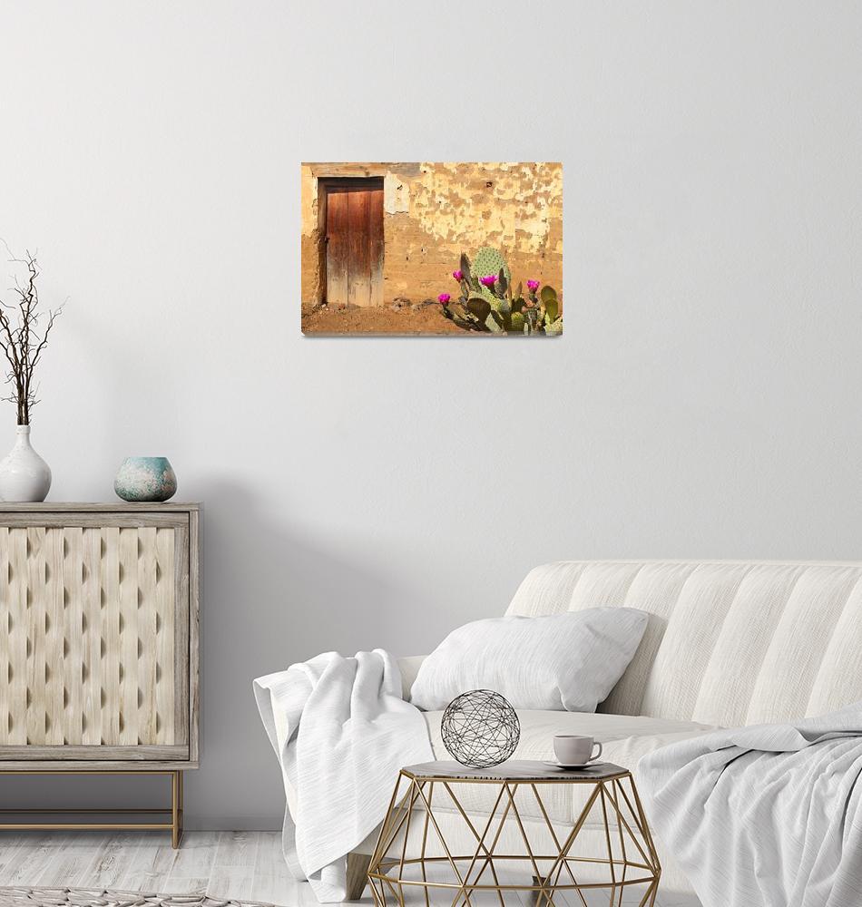 """Adobe Wall, Door, Blooming Cactus"" (2016) by charker"