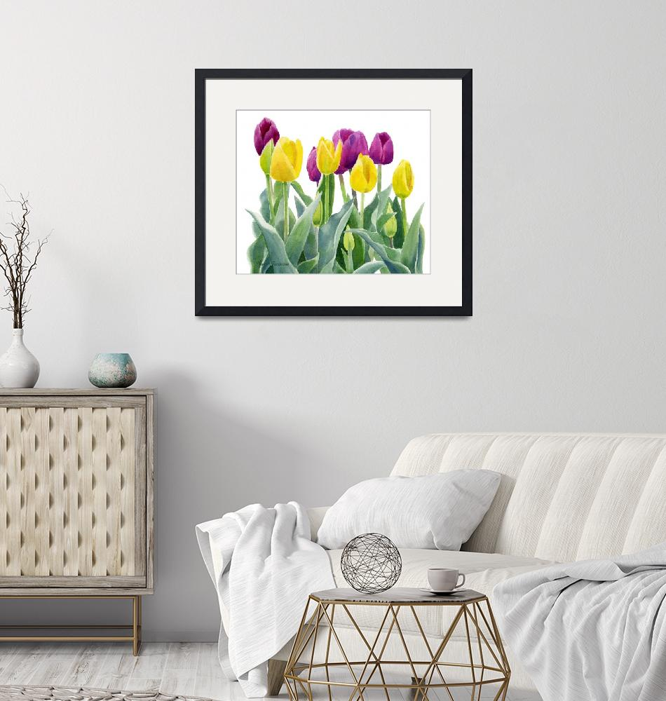 """""""Yellow and Red Violet Tulips horizontal design""""  (2015) by Pacific-NW-Watercolors"""