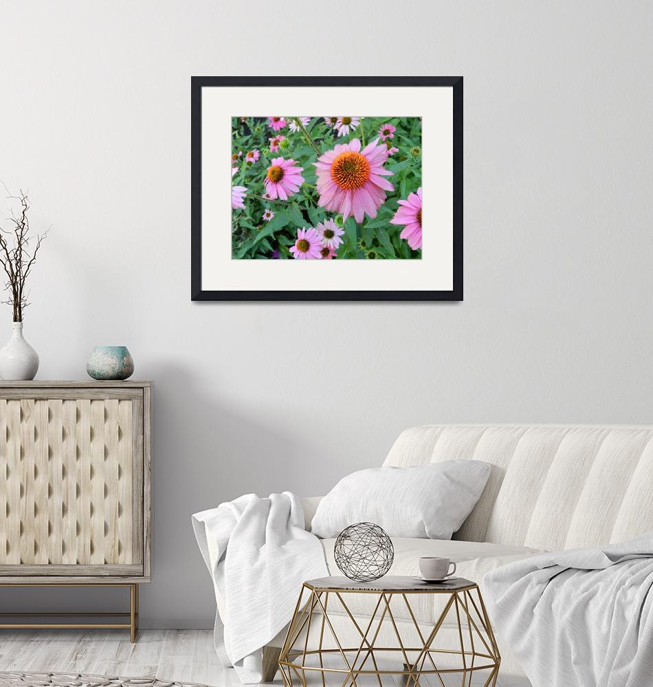 """""""Pink daisies""""  by lizmix"""
