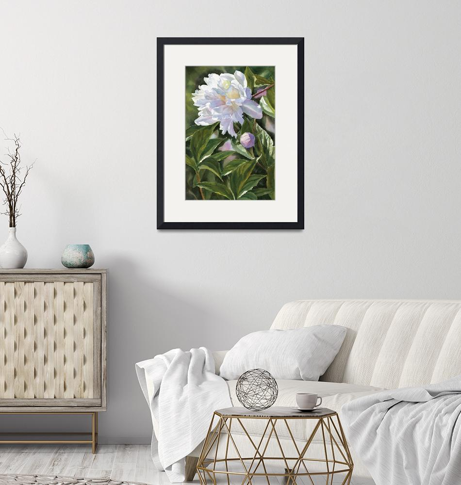 """White Peony with Bud""  (2006) by Pacific-NW-Watercolors"