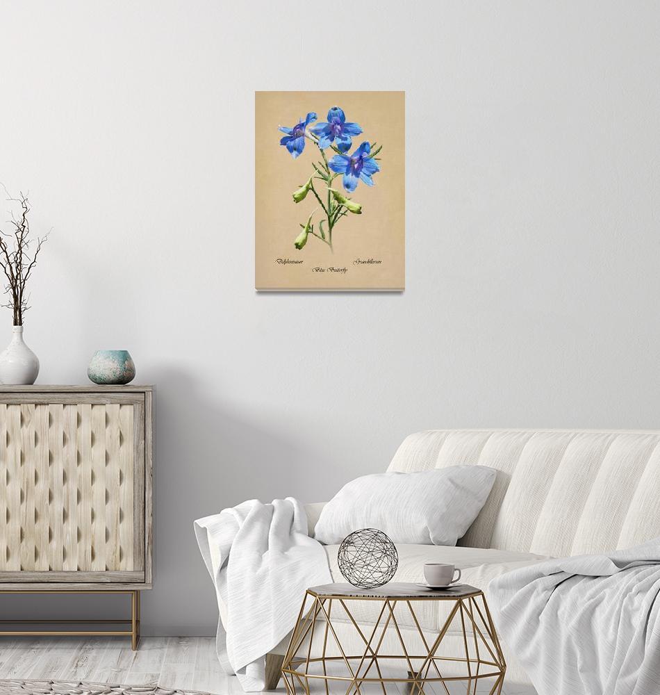 """Blue Butterfly Delphinium""  (2018) by spadecaller"