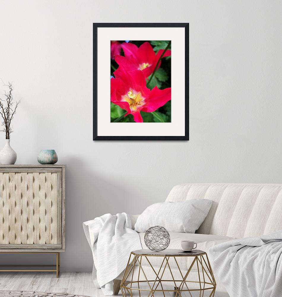 """""""Pink Tulips Abstract""""  (2011) by rewards4life"""