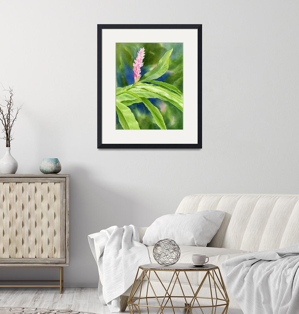 """""""Pink Ginger with Blue and Green Background"""" by Pacific-NW-Watercolors"""