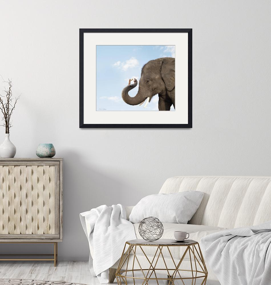 """""""Cute photo of elephant and mouse friends sharing a"""" (2009) by StephanieDRoeser"""