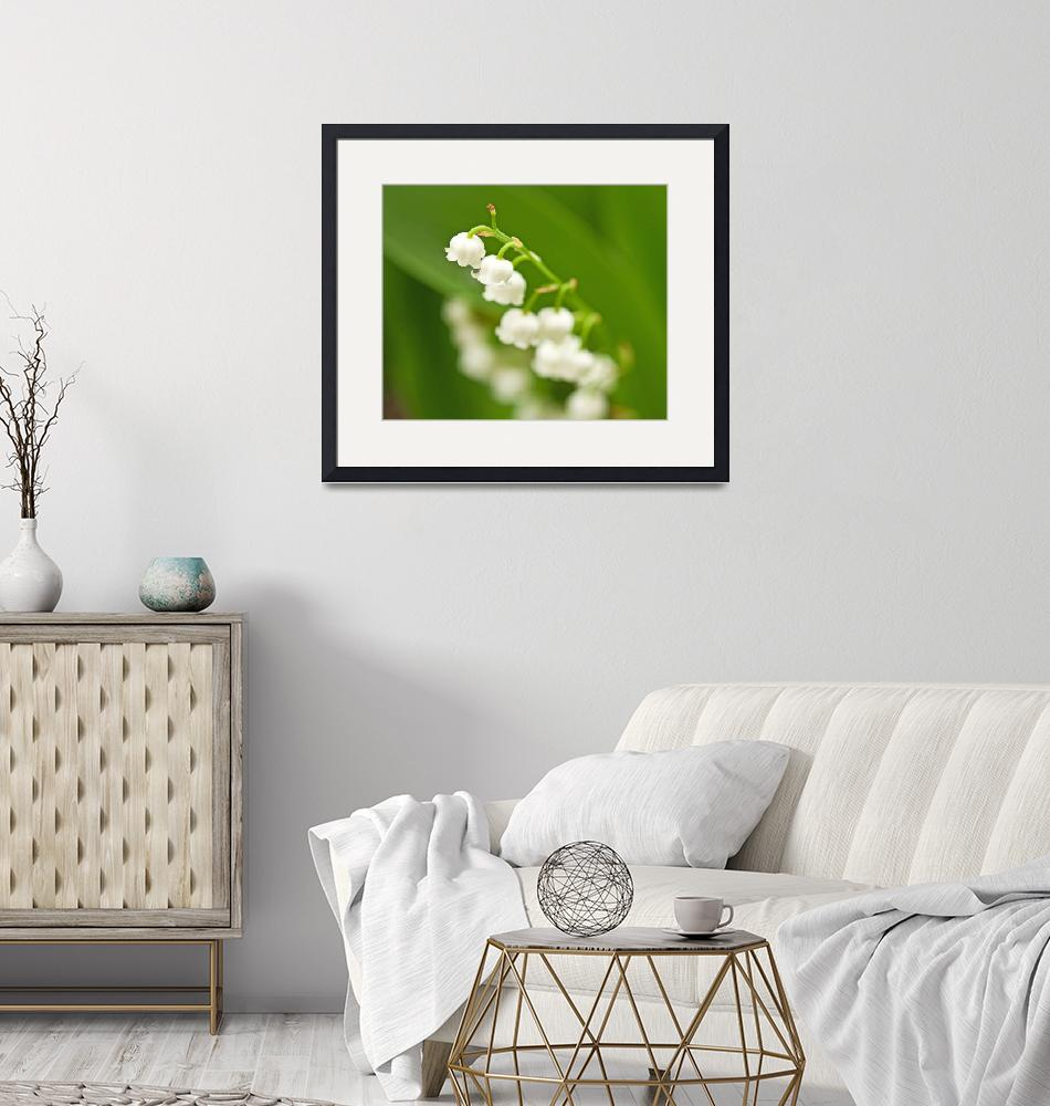 """""""Lily of the Valley""""  by LJS"""