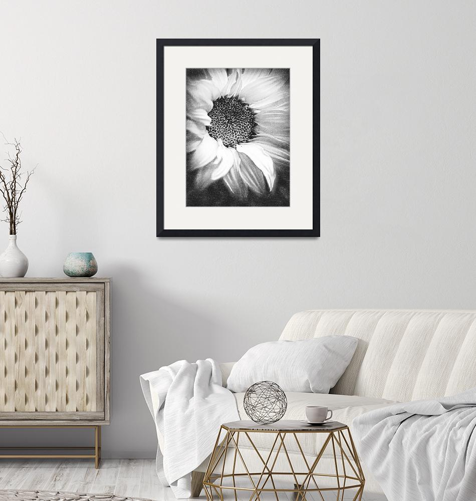 """Sunflower White And Black""  (2014) by RubinoFineArt"