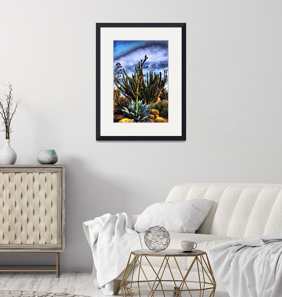 """""""Agave Flower and Cactus""""  (2007) by johncorney"""