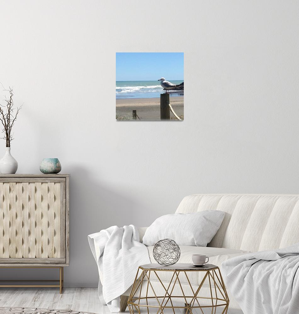 """Piha Beach""  (2015) by TracyNicolePhotographyNZ"