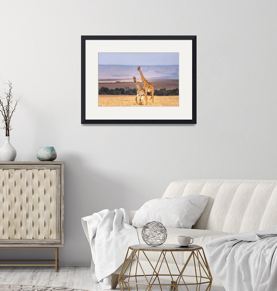 """""""Mother and Child Giraffes""""  (2011) by mjphoto-graphics"""