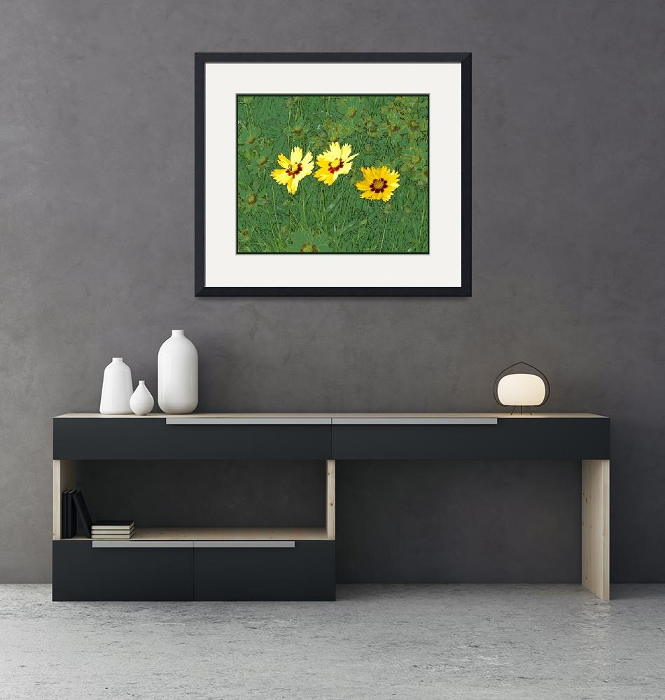 """""""Coreopsis in Bee -Flowers""""  (2011) by byStangz"""