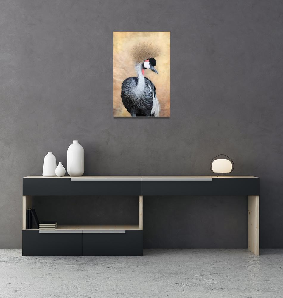 """""""Grey Crowned Crane""""  (2013) by walbyent"""