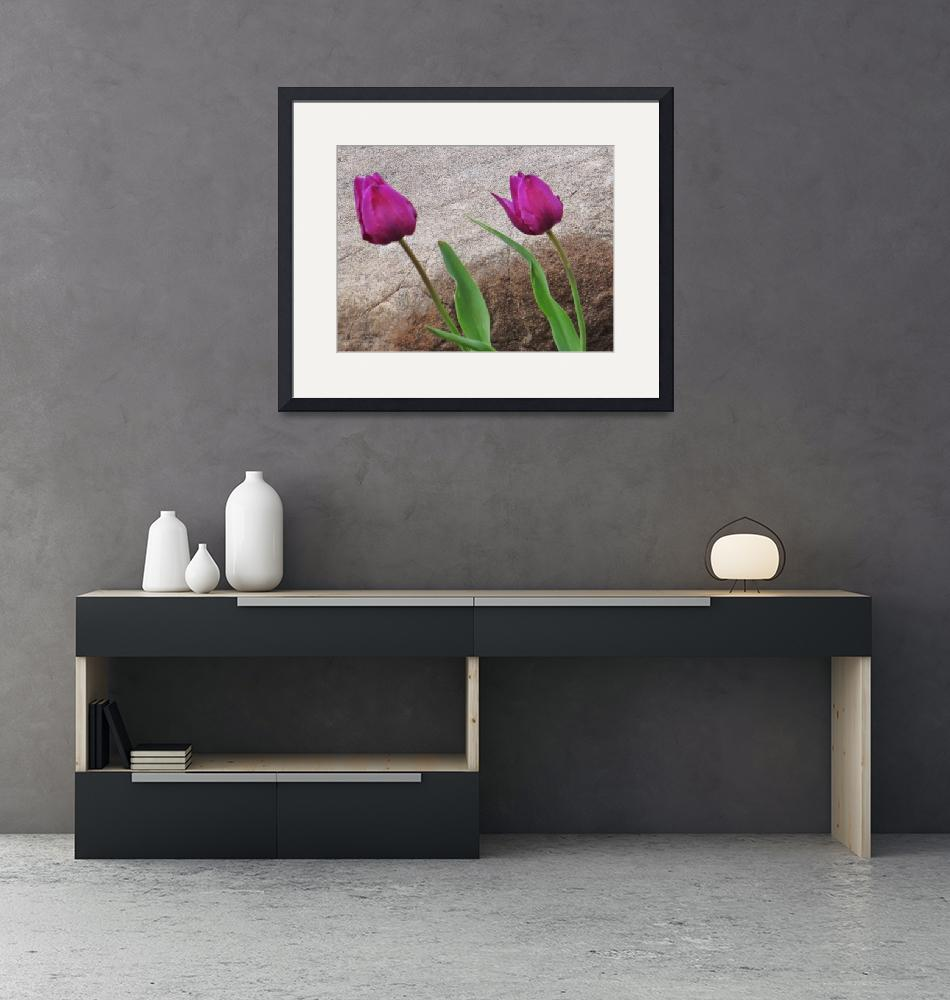 """""""Two tulips and cement"""" (2016) by Anewsgal"""
