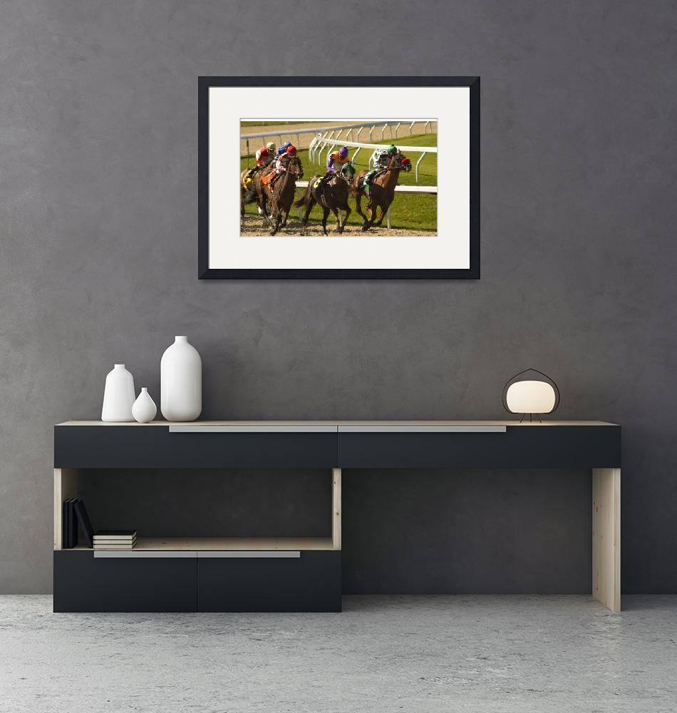 """""""Thoroughbred Horse Race 8772""""  by CooperSlay"""