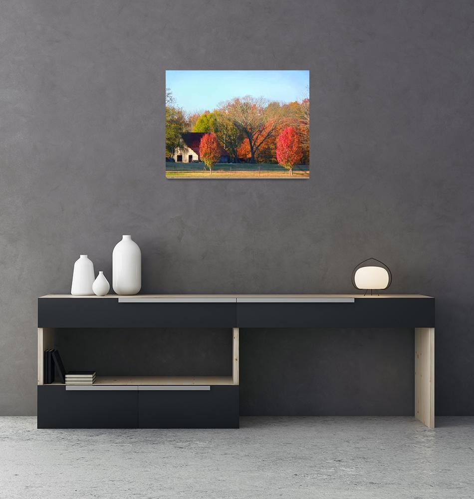 """Autumn Country 012""  (2009) by photographybydonna"