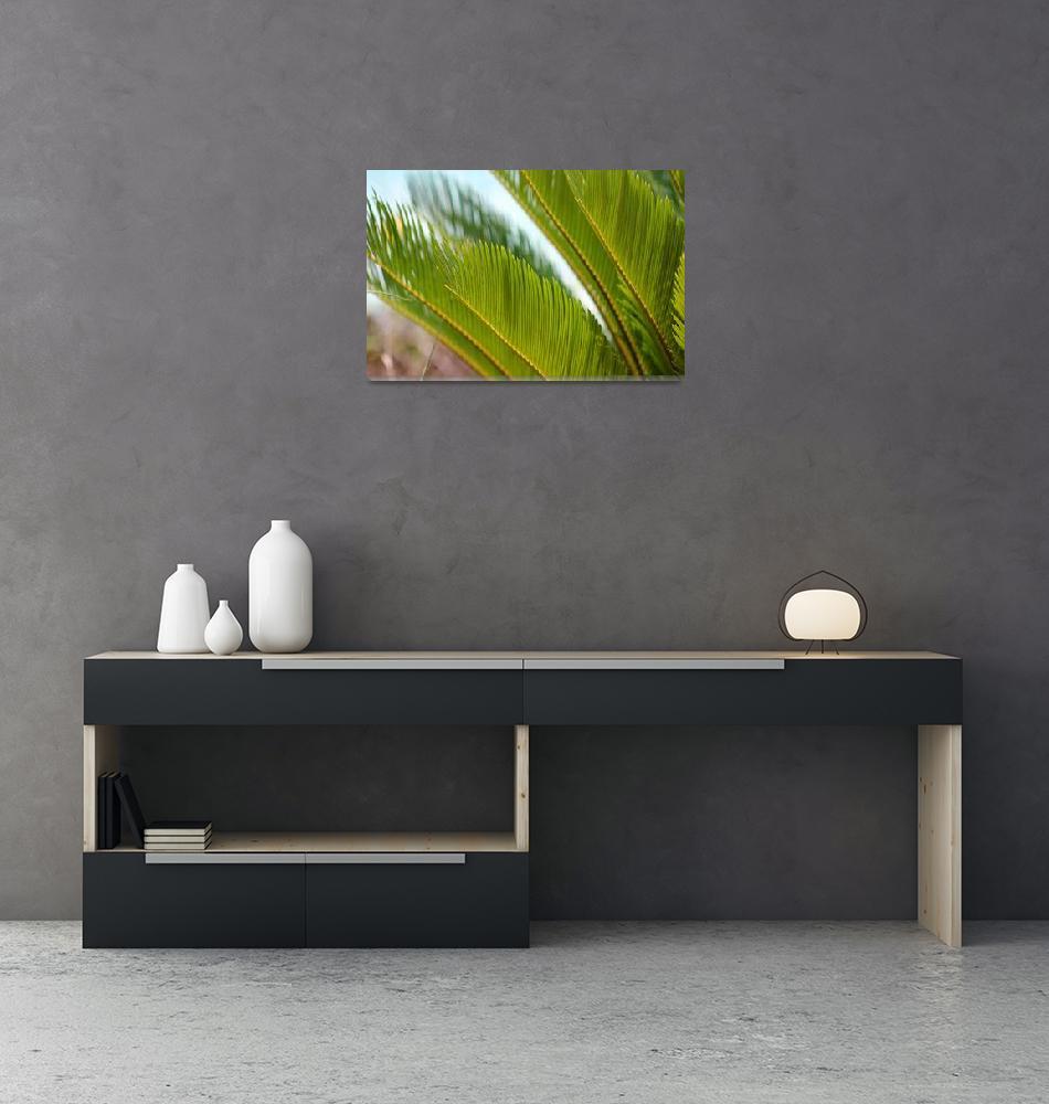 """Palm Fronds 2016""  (2016) by KsWorldArt"