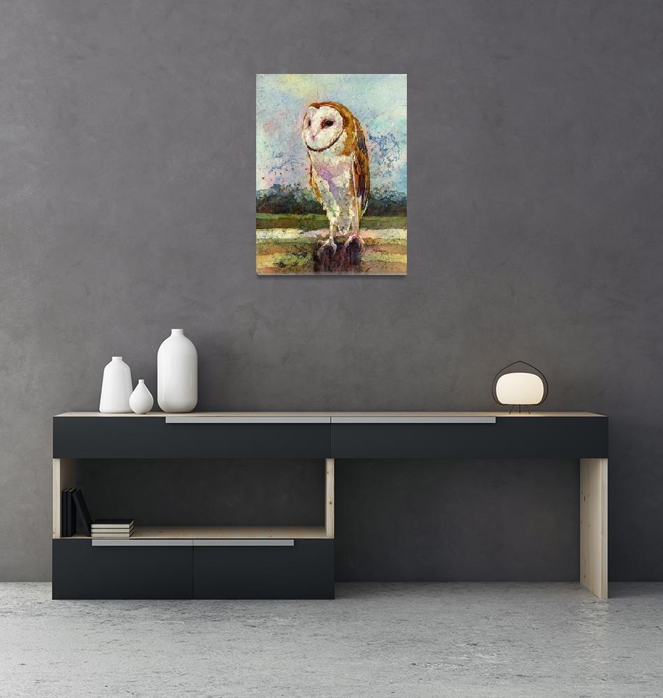 """Barn Owl""  (2015) by HaileyWatermedia"
