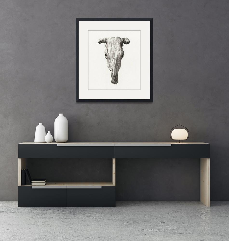 """Skull of a Cow Illustration by Jean Bernard""  by FineArtClassics"