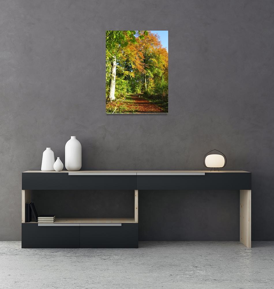 """wood""  (2008) by Dan-TuyetTham"