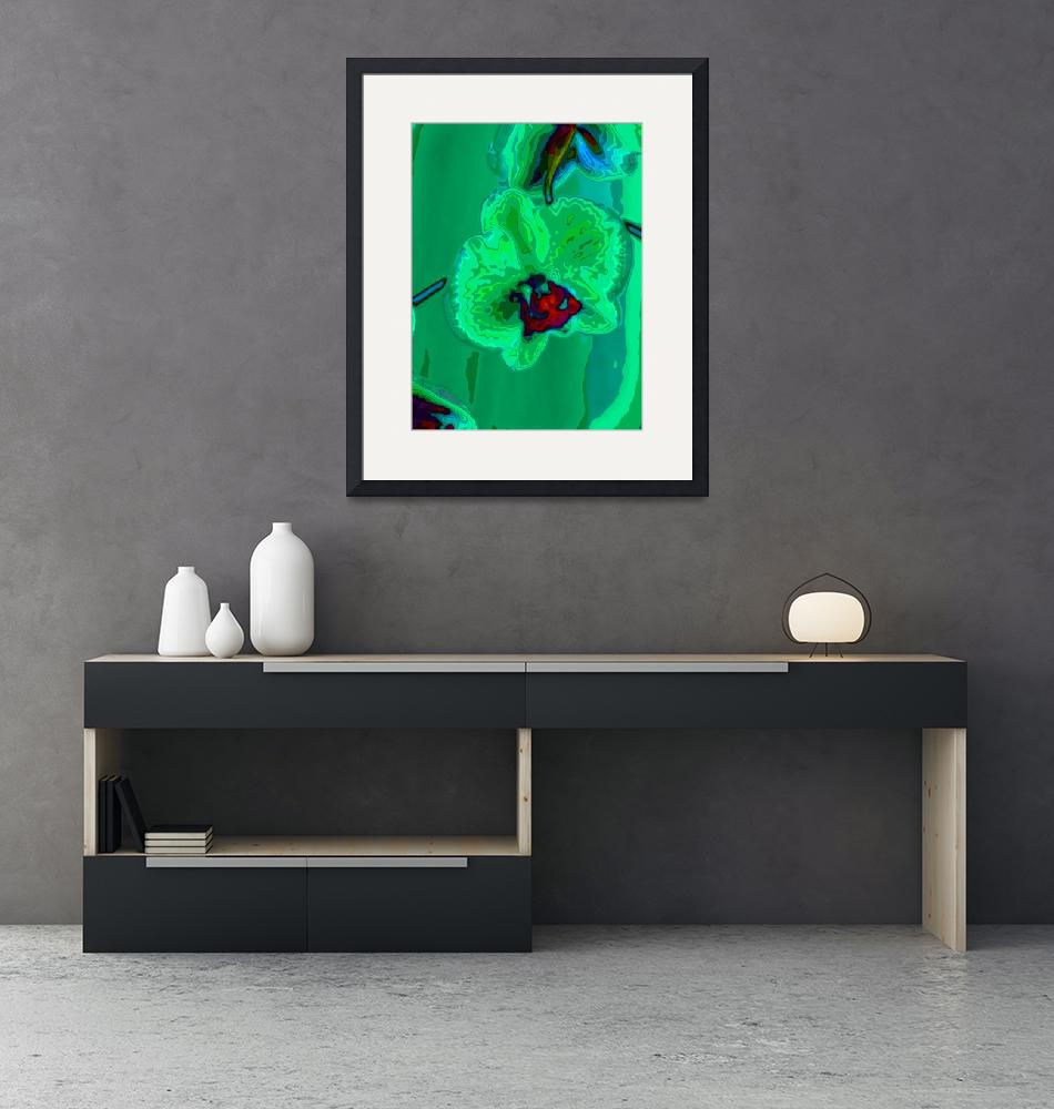 """""""green orchid""""  (2009) by walbyent"""