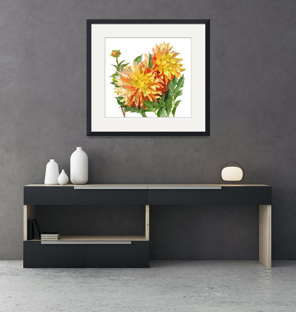 """""""gold and orange dahlias 11.5 x 12.5""""  by Pacific-NW-Watercolors"""