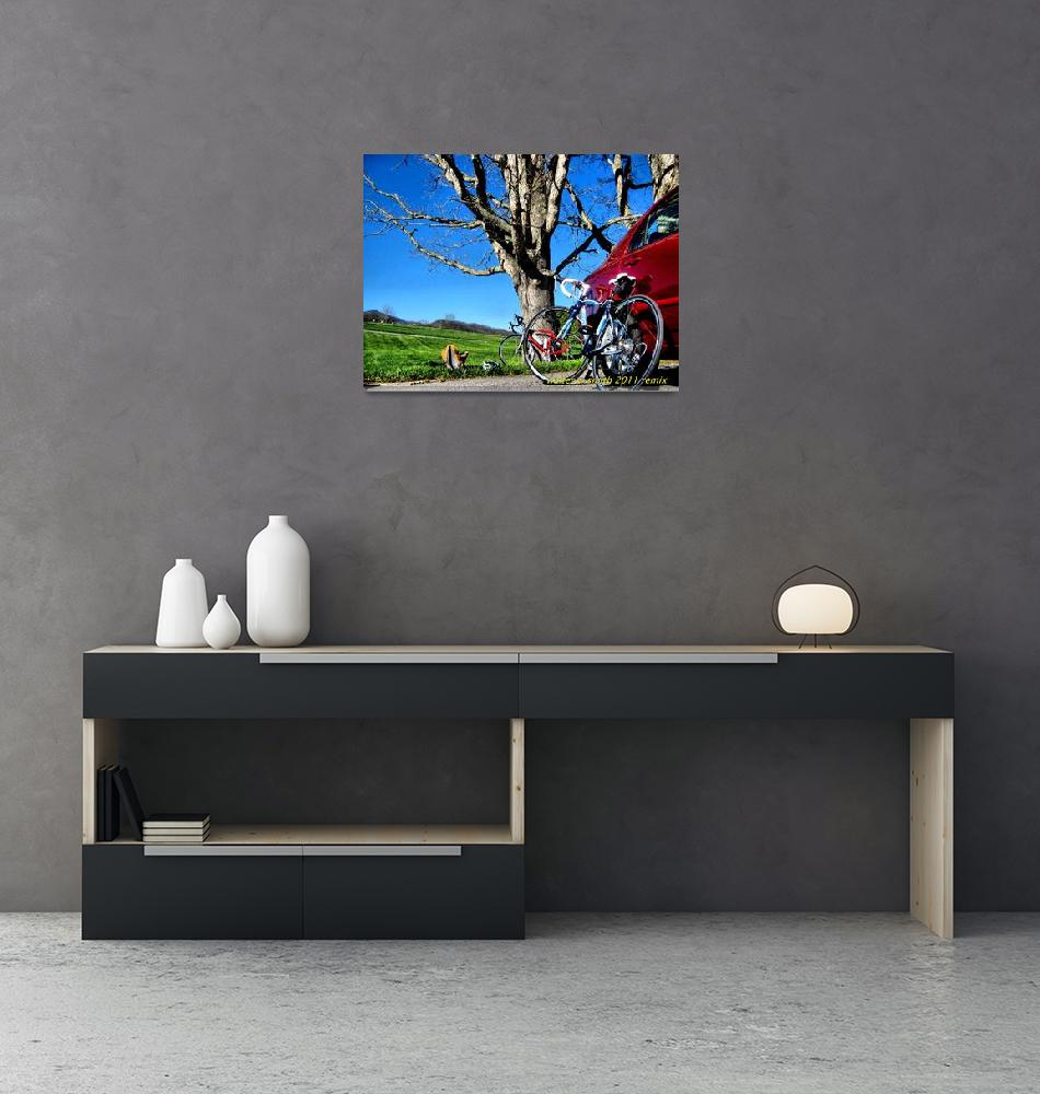"""""""Bikes and Tree""""  (2011) by newdigitalscapes"""