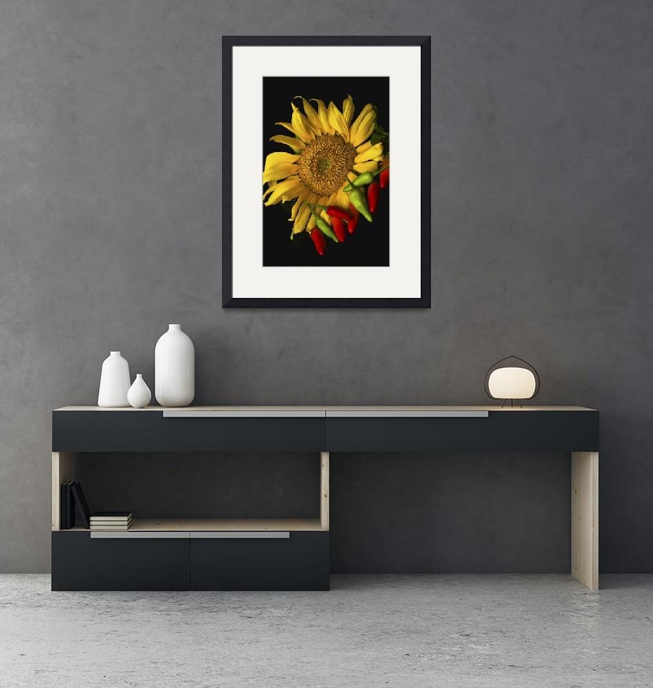 """""""Sunflower and Peppers in Studio""""  by jimcrotty"""