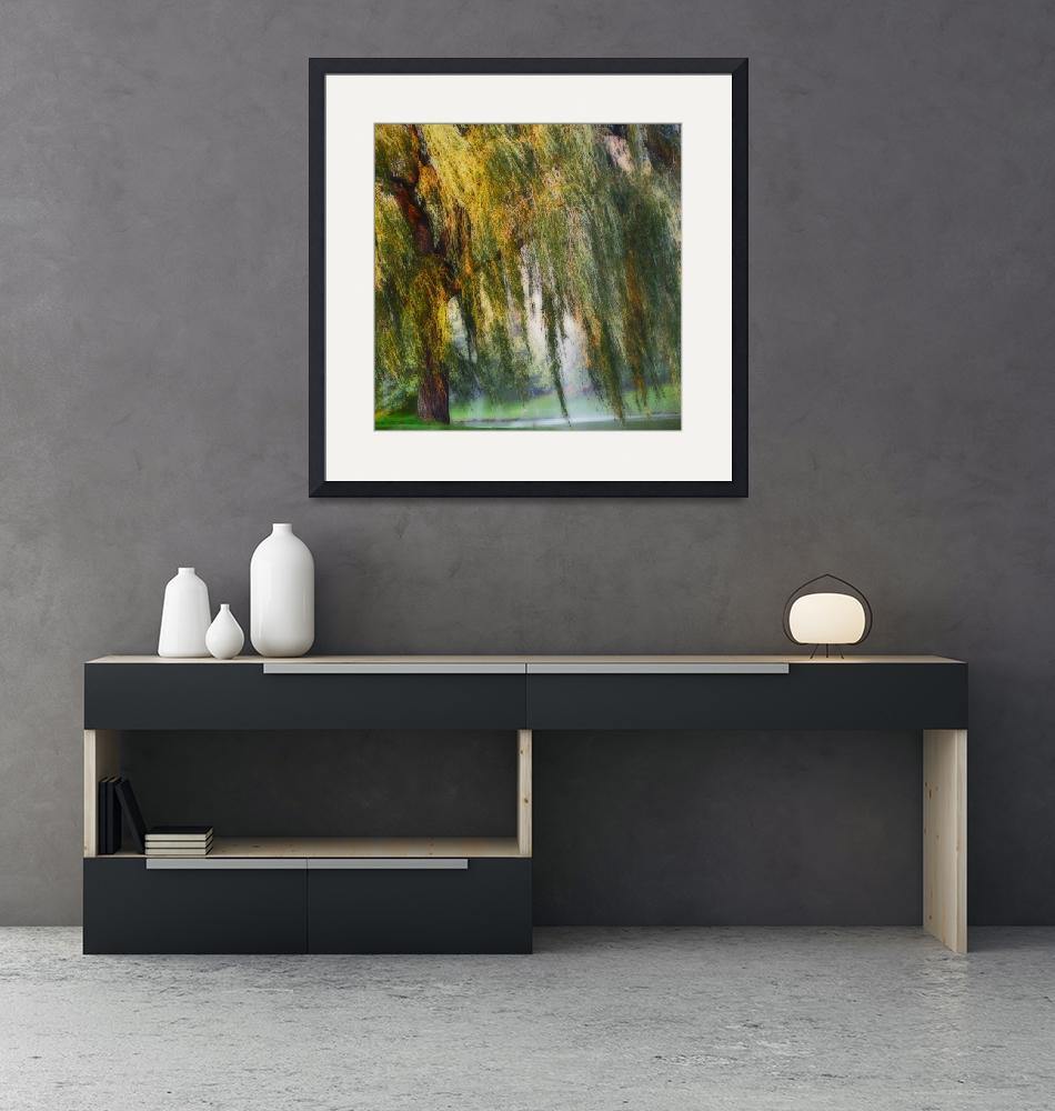 """""""Weeping Willow Tree Landscape Meditation Wall Art""""  (2018) by PhotographsByCarolFAustin"""