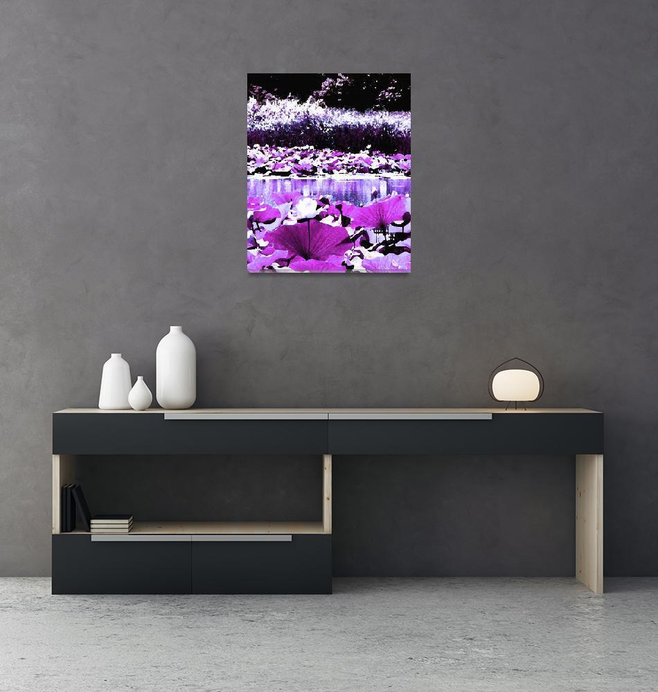 """""""White Water Lotus in Violet""""  (2012) by ShawnaRowe"""