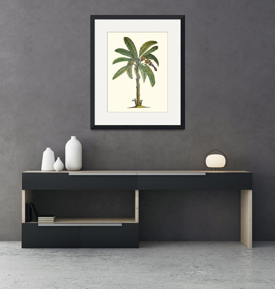 """Banana Tree Botanical""  (2004) by joeyartist"