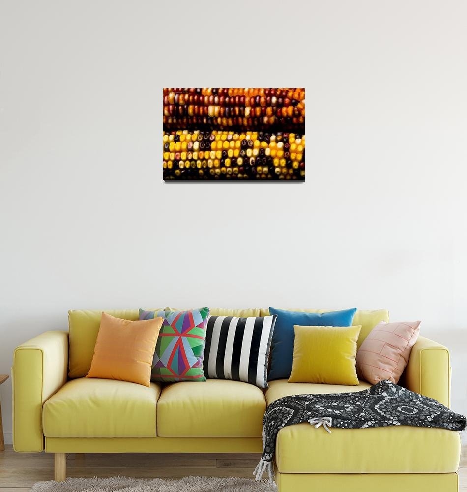 """Colorful Corn - Fine Art Photography Print""  (2009) by lightningman"