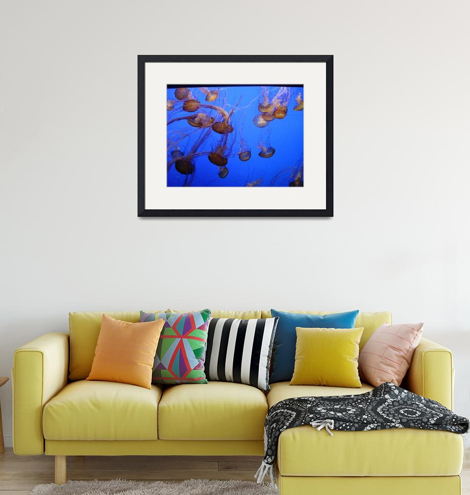 """Sea Life, 4""  (2010) by brianne"