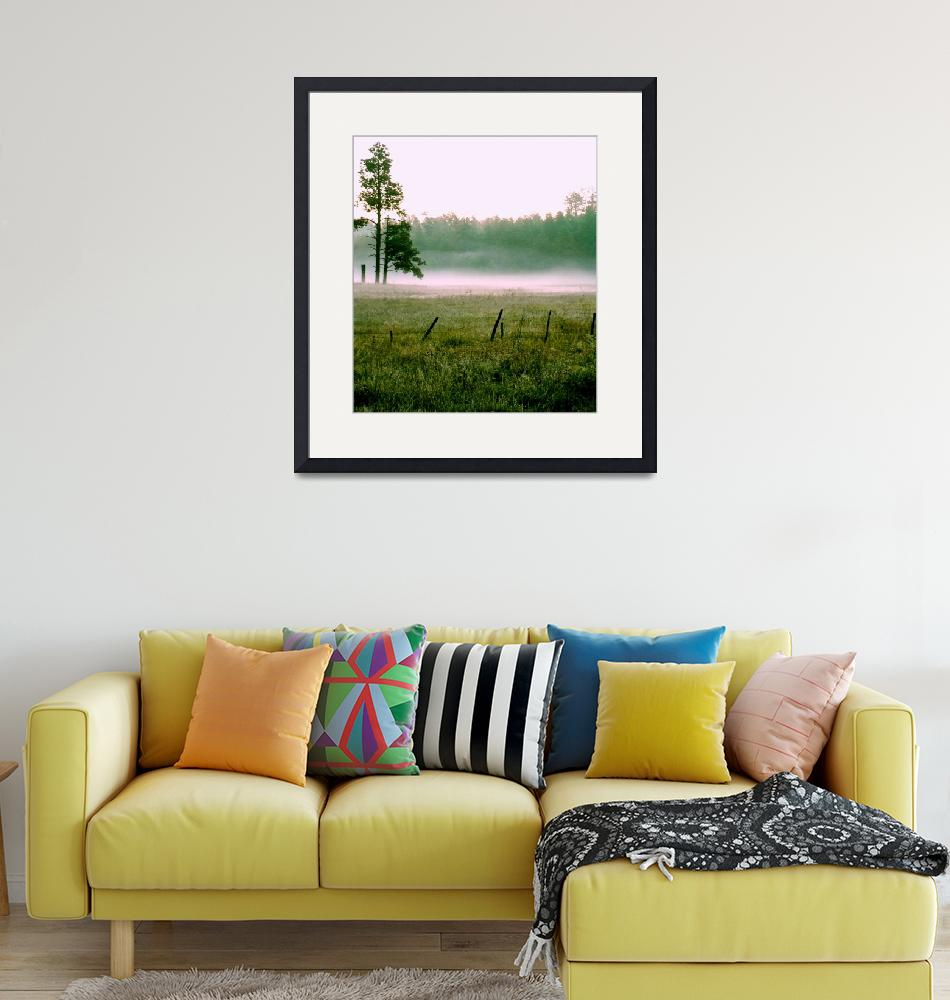 """""""Misty Morning Meadow""""  (2006) by rayjacque"""
