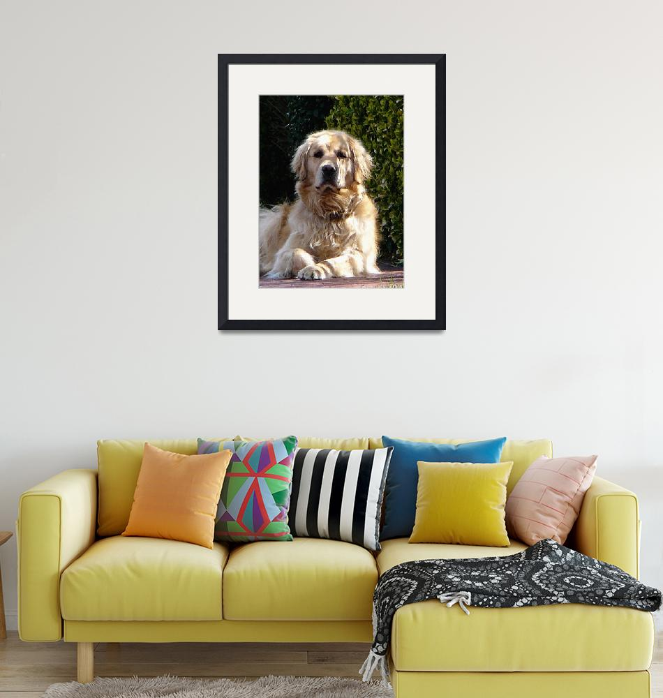 """""""Dog on Guard""""  by susansartgallery"""