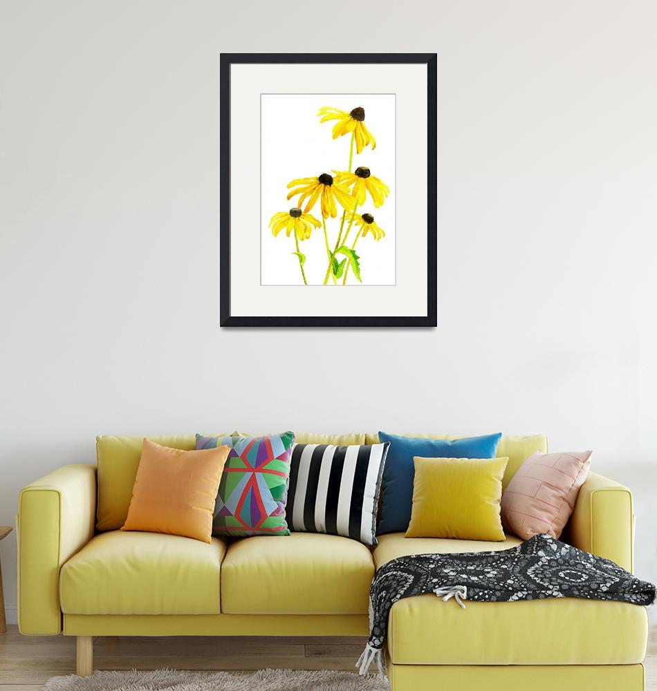 """""""Yellow Black Eyed Susan""""  (2013) by Pacific-NW-Watercolors"""