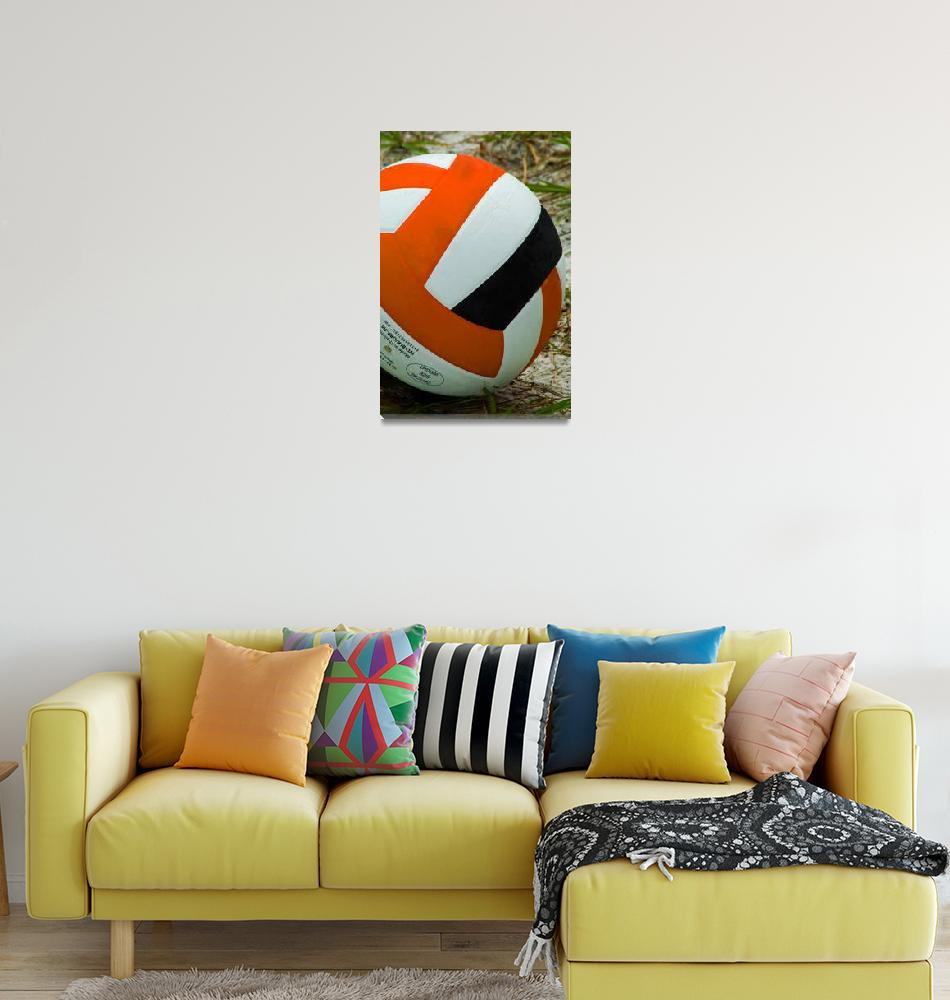 """""""Volleyball""""  (2013) by DBell"""