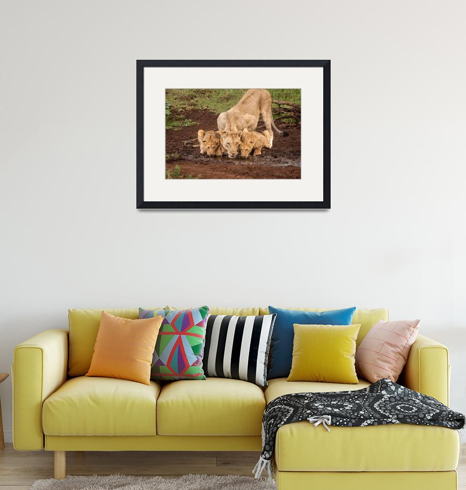 """""""African Lioness and Cubs""""  (2011) by mjphoto-graphics"""