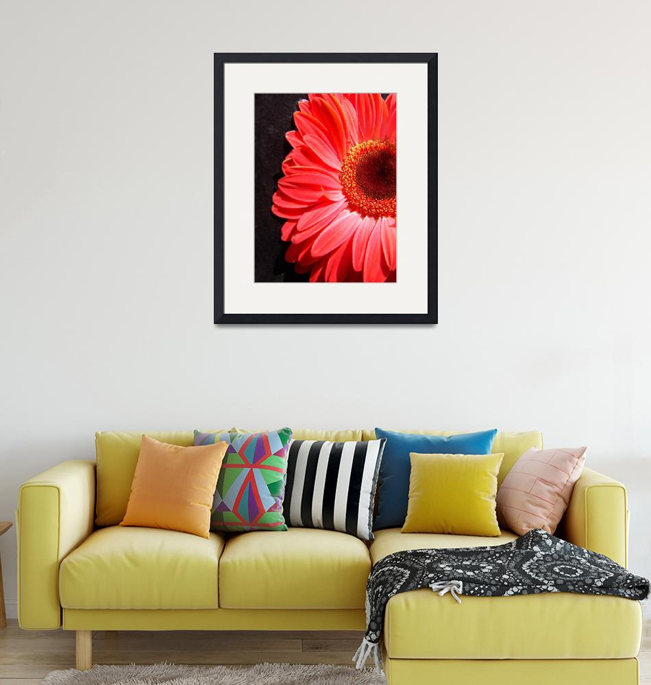 """Red Gerbera Daisy Luxurious""  (2006) by Infomages"