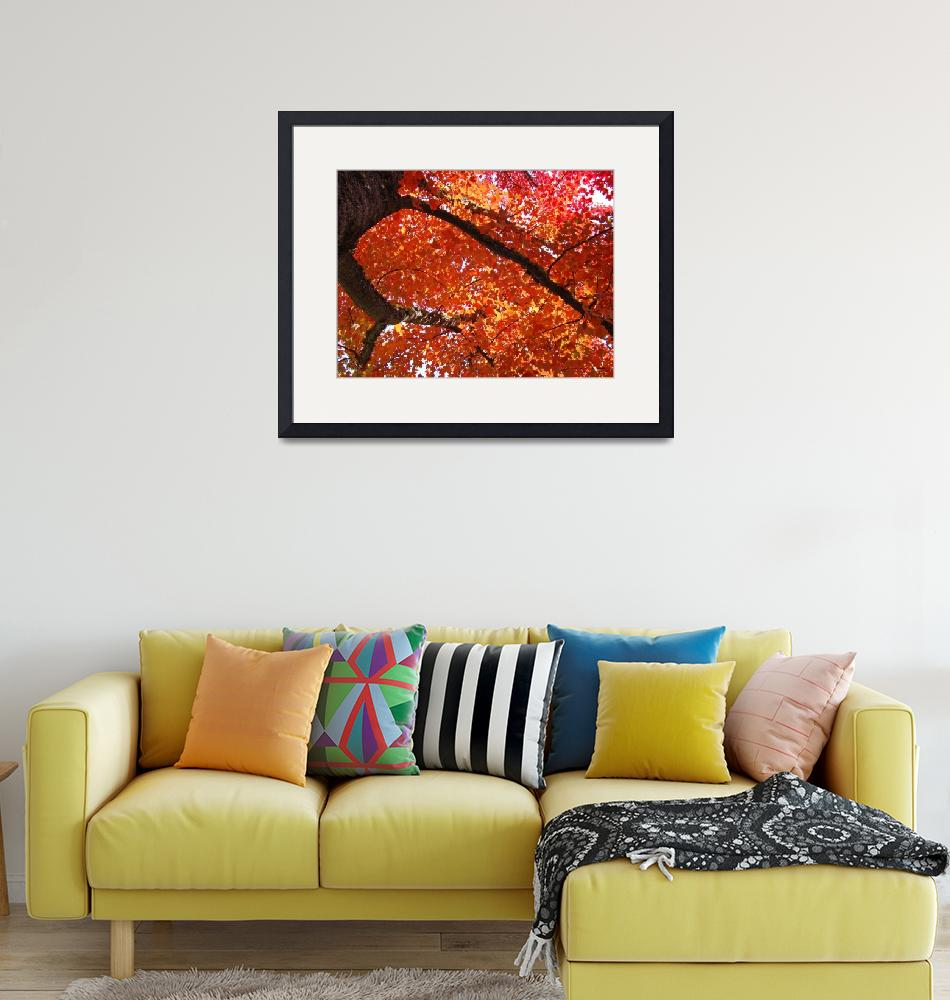 """""""AUTUMN TREES Art Fall Landscape Orange Red Leaves""""  (2009) by BasleeTroutman"""