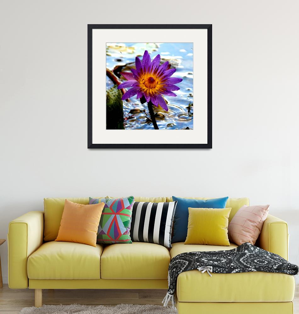"""""""Purple Lily""""  (2008) by jamesdphotography"""