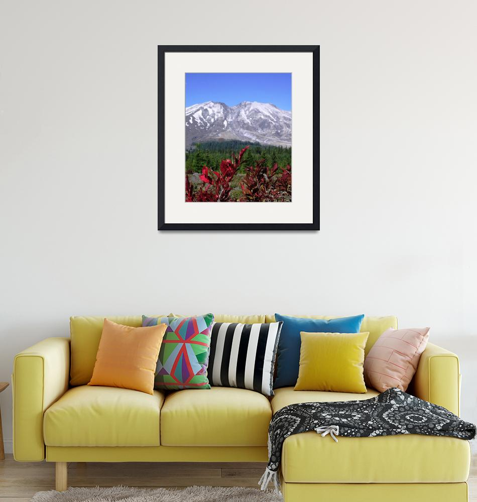 """Mt St Helens - 30 Years Later""  (2010) by aRTPhotograph"