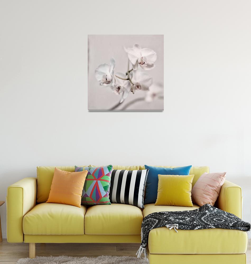 """orchidspastel""  (2020) by Piri"