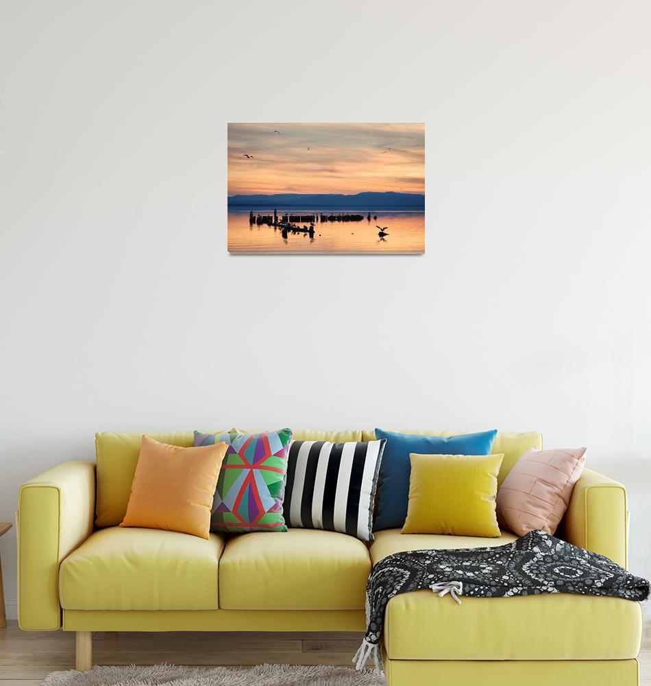 """Salton Sea near Bombay Beach, California""  by lowellaguno"