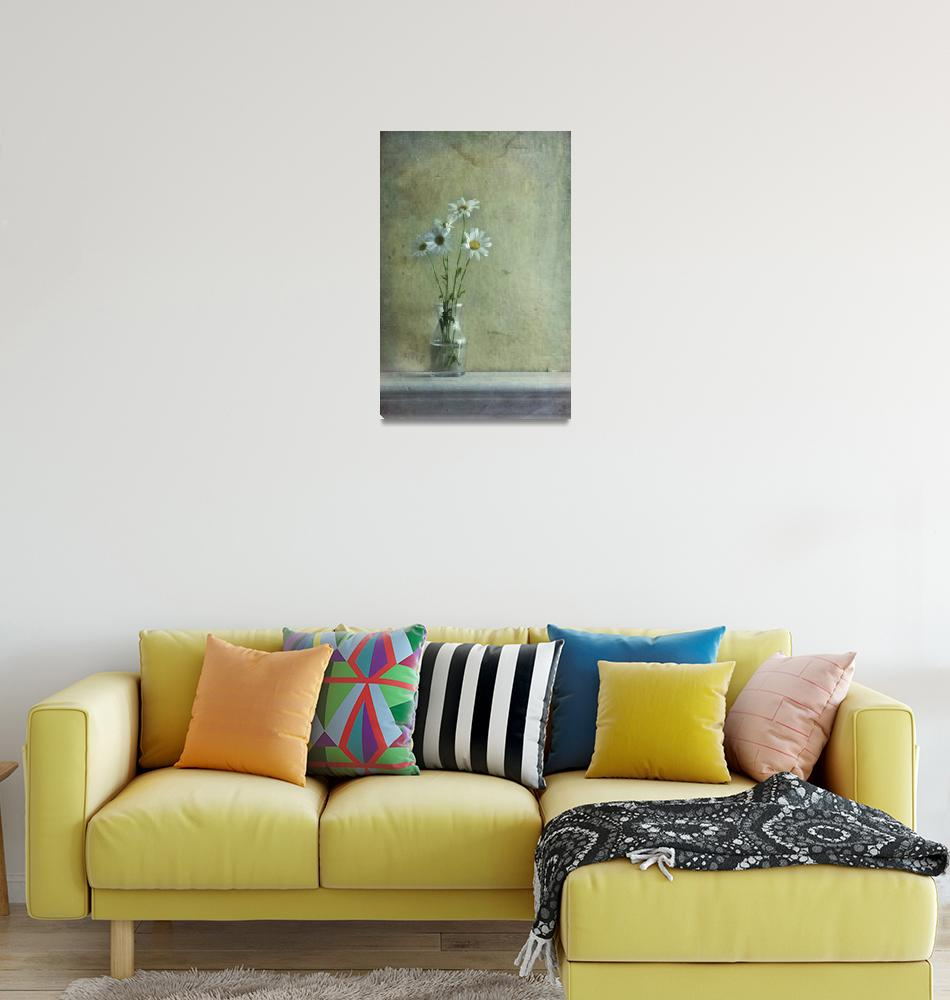 """simply daisies""  by Piri"