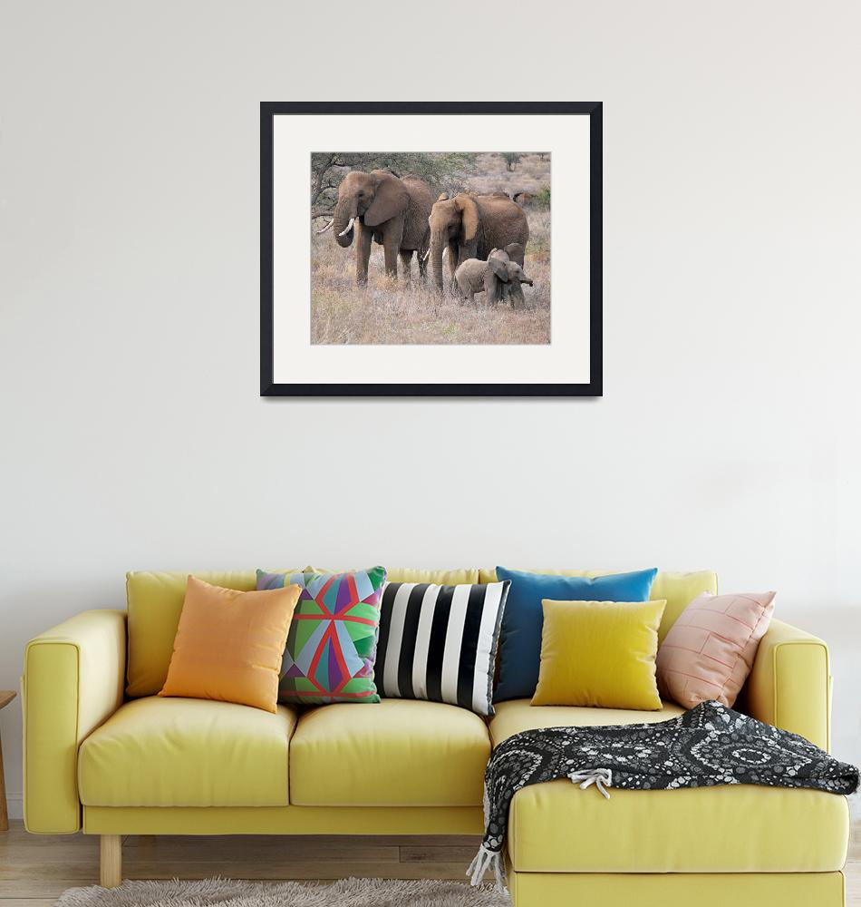 """Elephant Family""  (2007) by stockphotos"