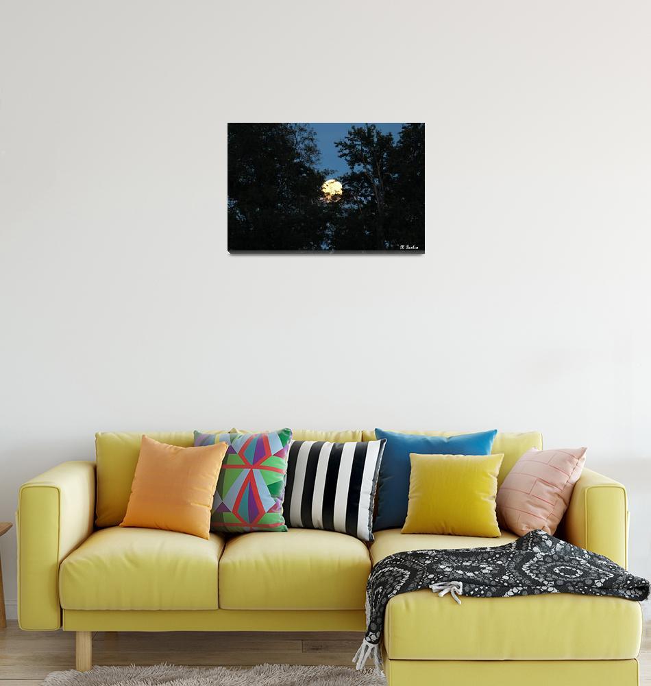 """Hidden Moon""  (2014) by melissasdesigns"