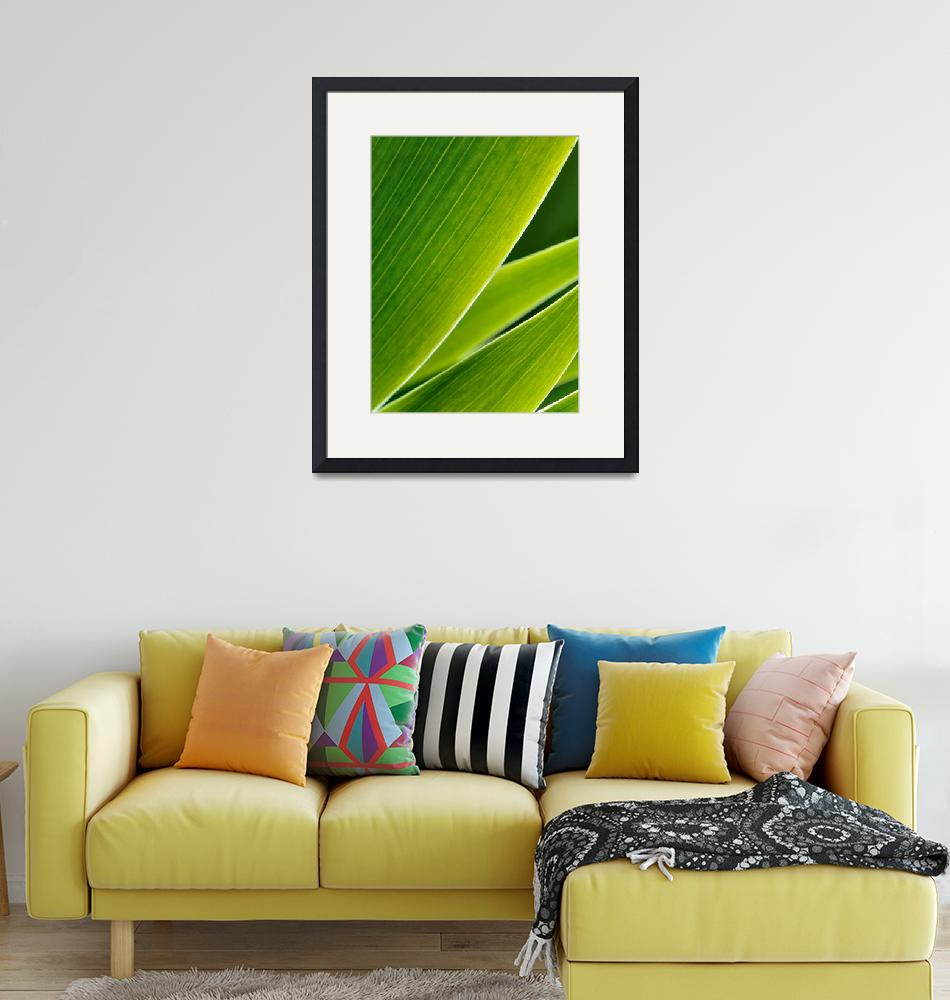 """""""Green leafs in abstract zen style""""  (2012) by creative_photography"""