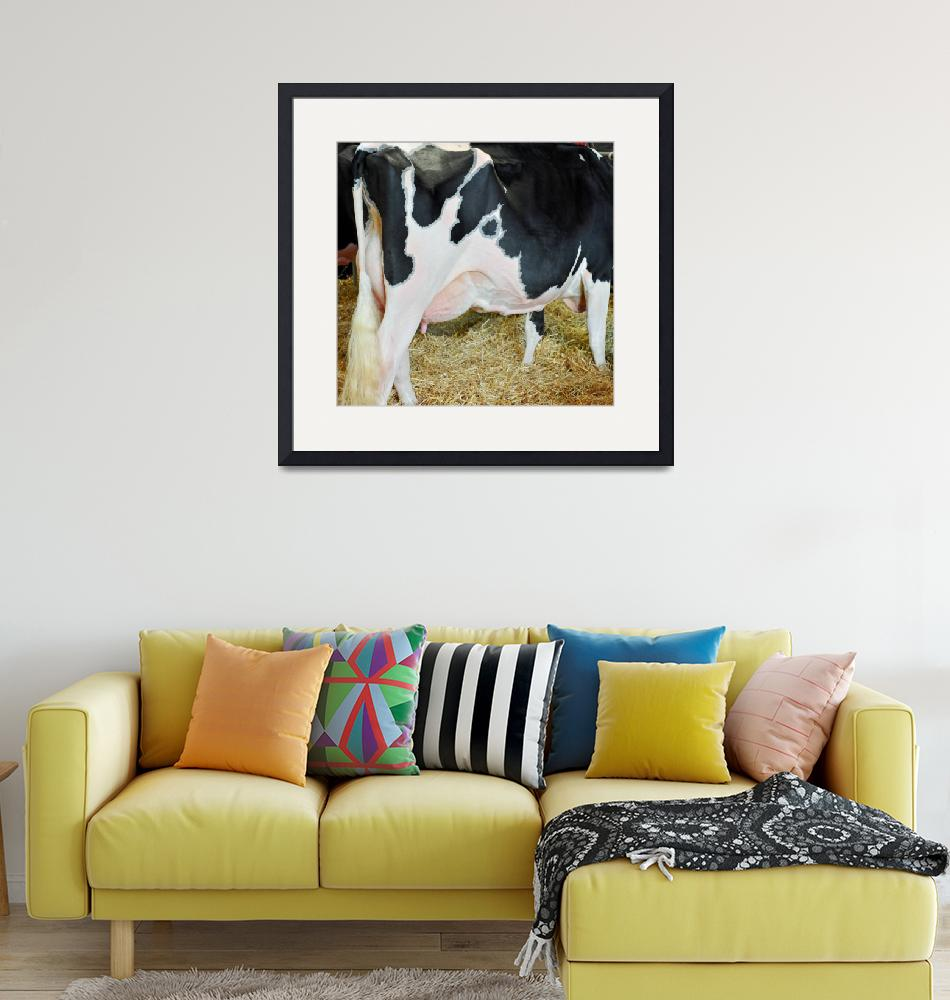 """Holstein Dairy Cow_5034""  (2015) by WindmillFarms"