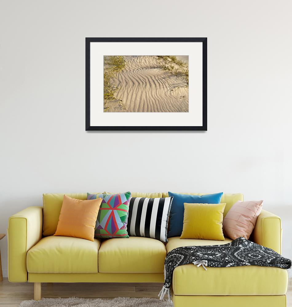 """""""Sand Ripples and Dune Grass""""  (2018) by MichaelStephenWills"""