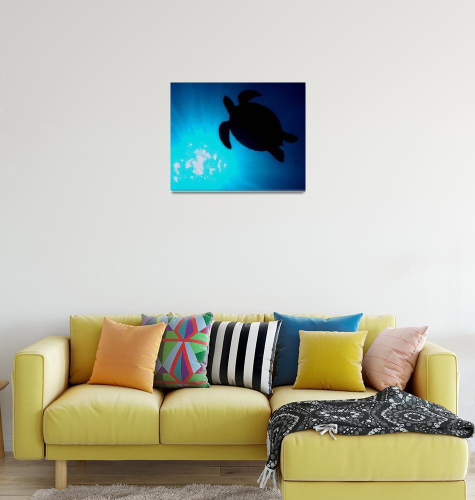 """Sea turtle Silhouette""  (2010) by JamesBWells"